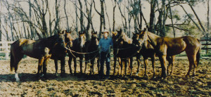 champion-team-of-ponies-1984-qld-gold-cupo