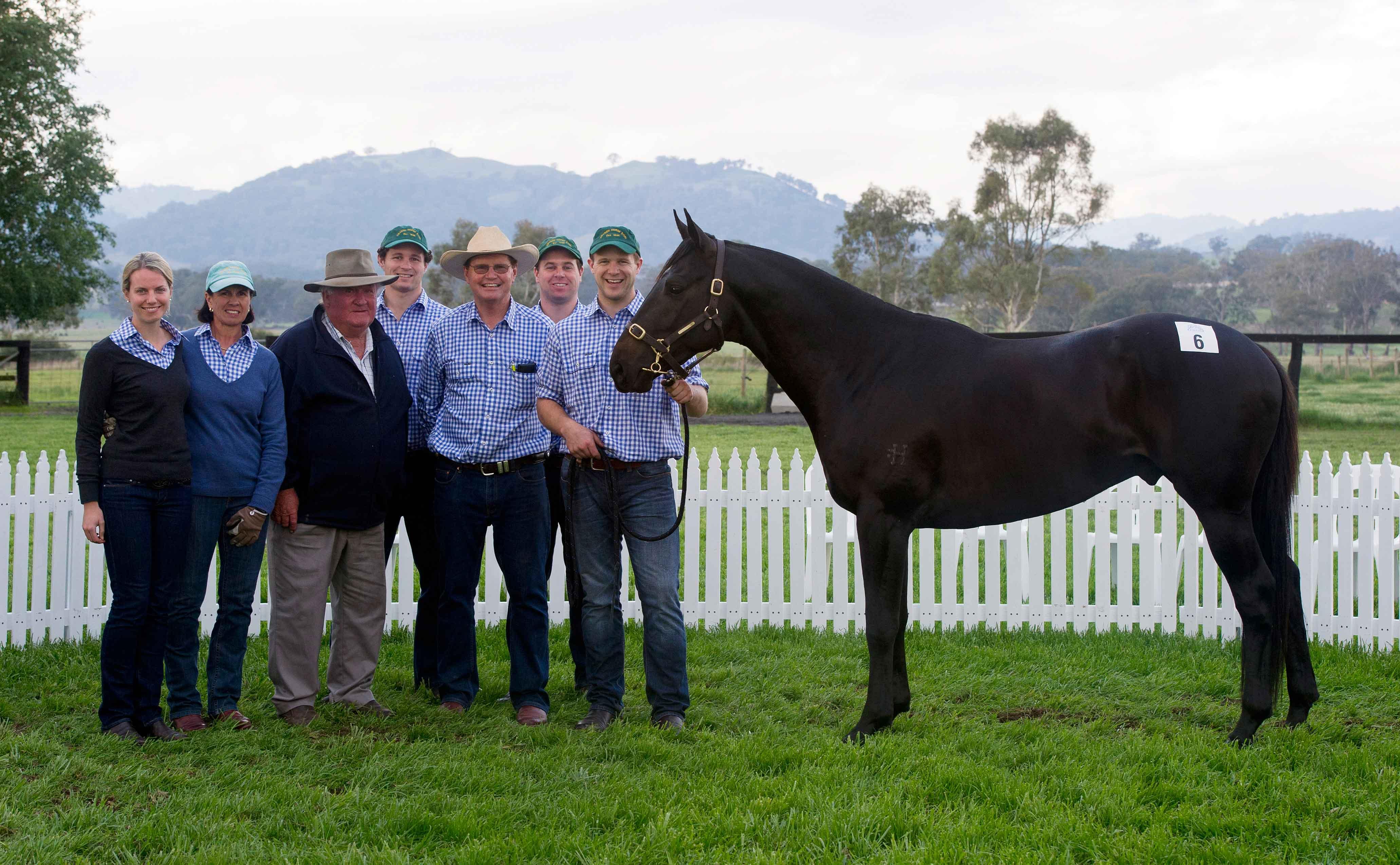 Haydon Orbital top priced colt