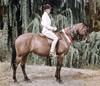 Pirouette II ridden by Tink Haydon